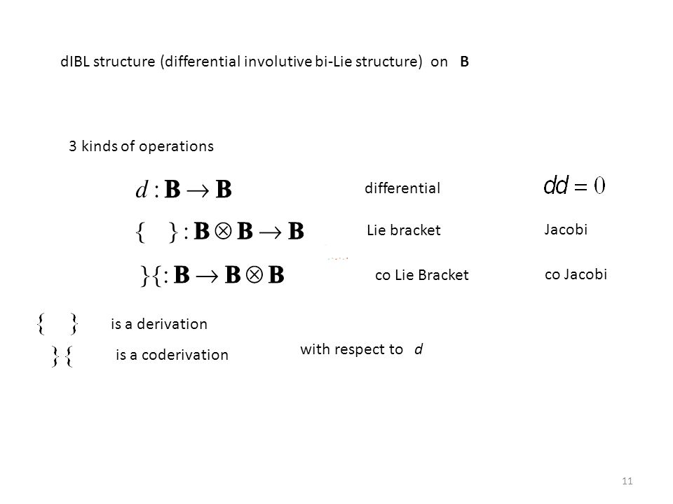dIBL structure (differential involutive bi-Lie structure) on B