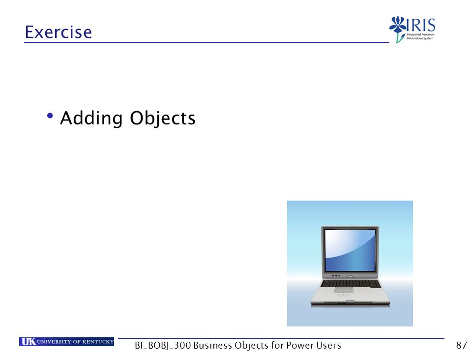 BI_BOBJ_300 Business Objects for Power Users