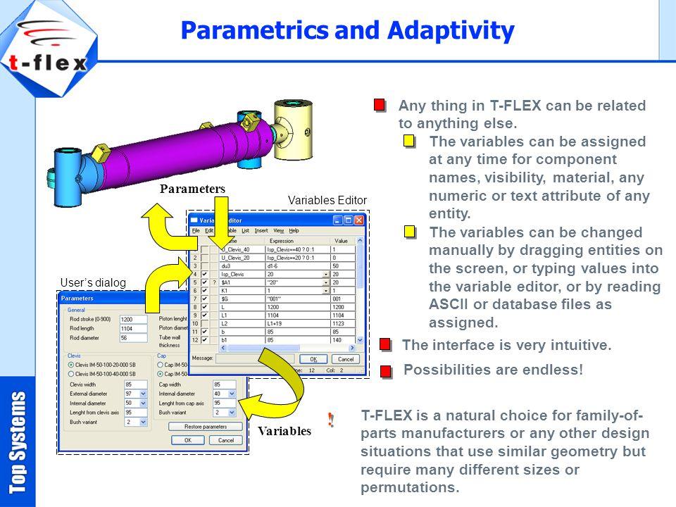 Parametrics and Adaptivity