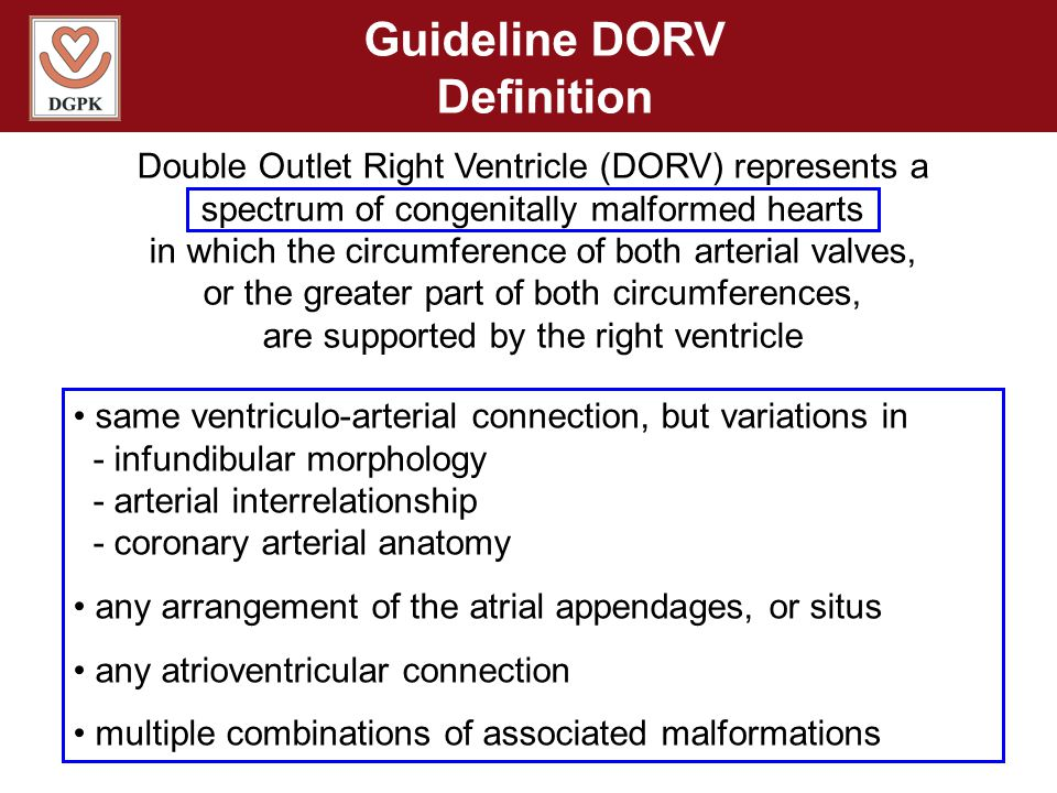 Guideline DORV Definition