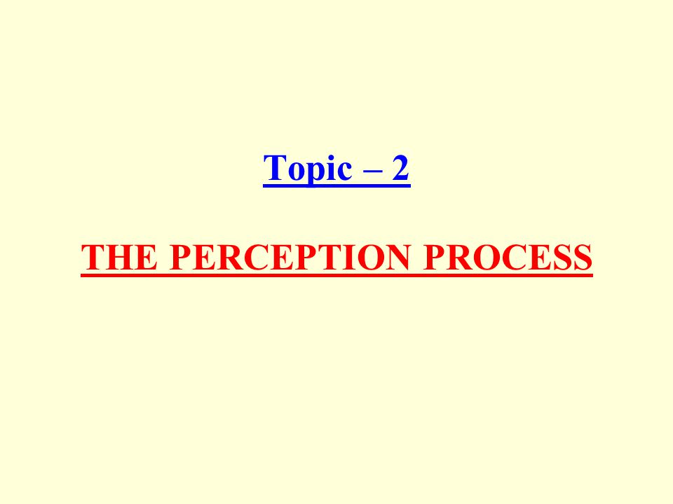 Topic – 2 THE PERCEPTION PROCESS