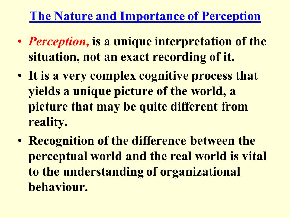 The Nature and Importance of Perception