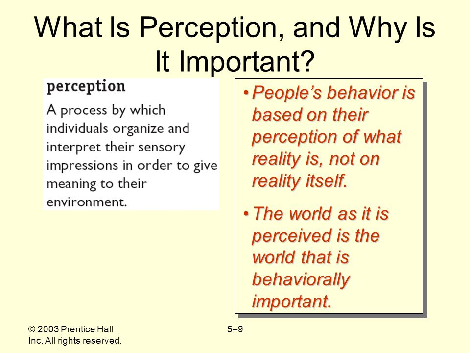 What Is Perception, and Why Is It Important