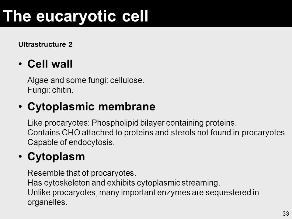 The eucaryotic cell Ultrastructure 2. Cell wall Algae and some fungi: cellulose. Fungi: chitin.