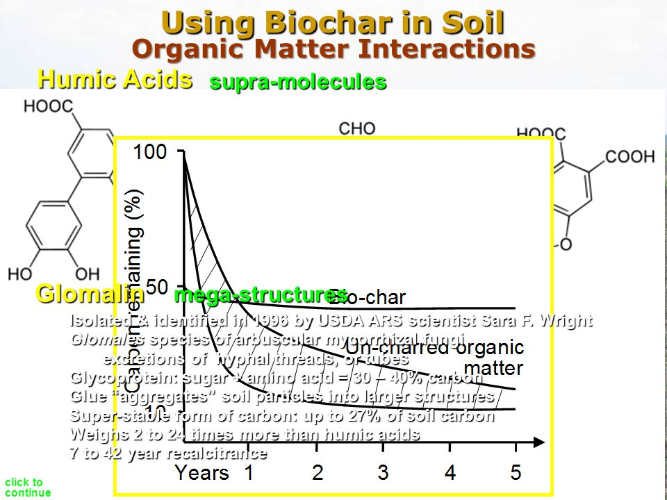 Organic Matter Interactions