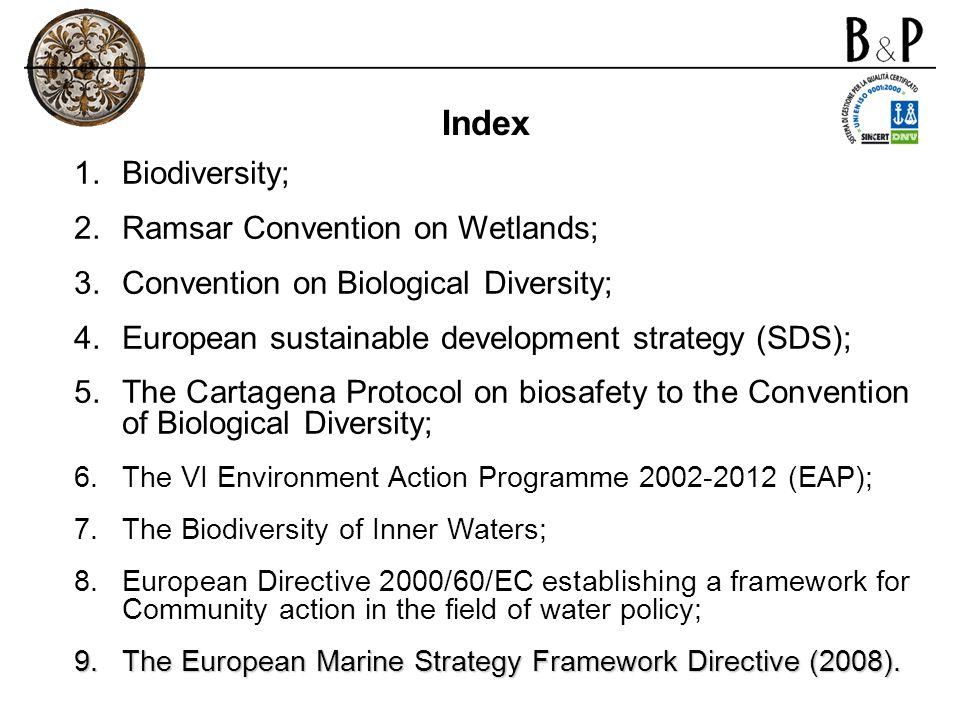 Index Biodiversity; Ramsar Convention on Wetlands;