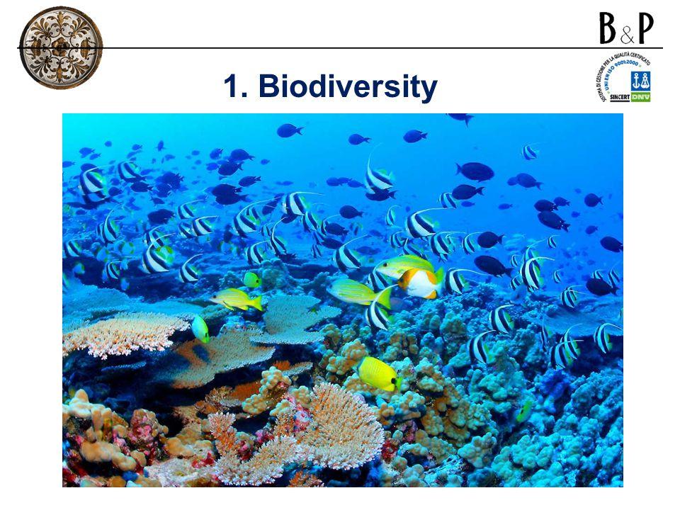 1. Biodiversity