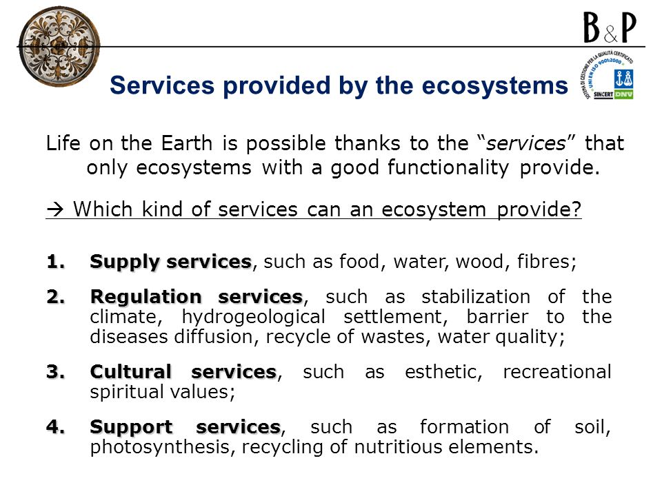 Services provided by the ecosystems