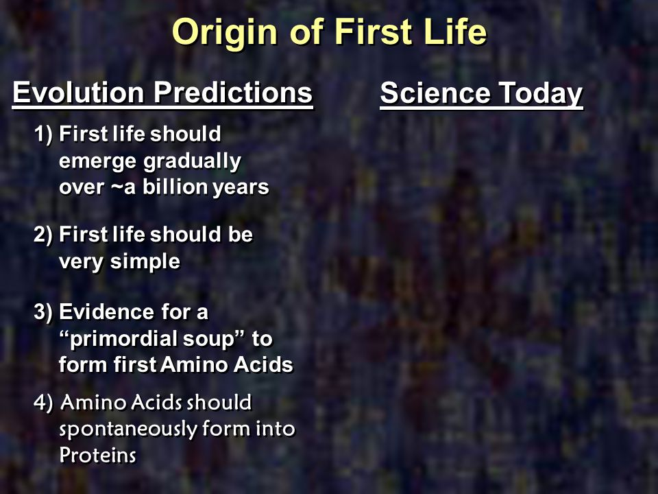Origin of First Life Evolution Predictions Science Today
