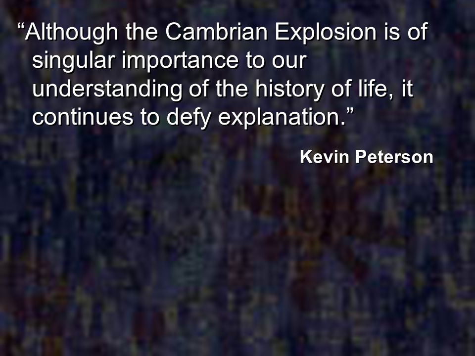 Although the Cambrian Explosion is of singular importance to our understanding of the history of life, it continues to defy explanation.