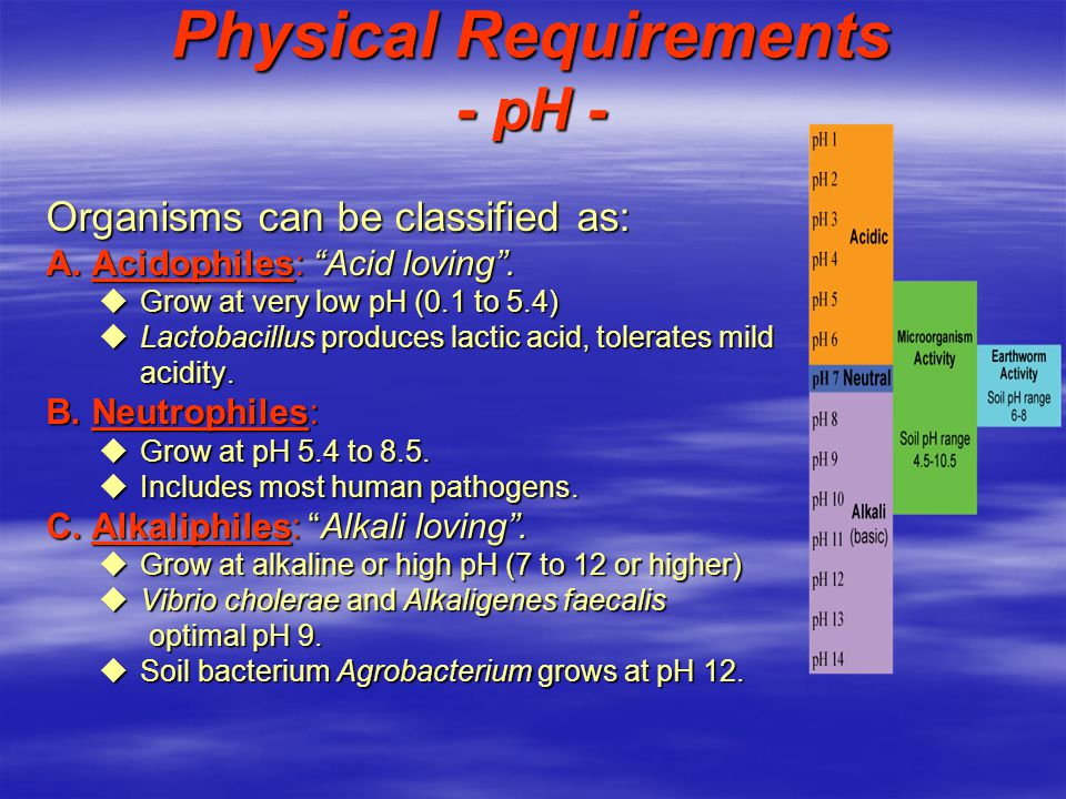 Physical Requirements - pH -