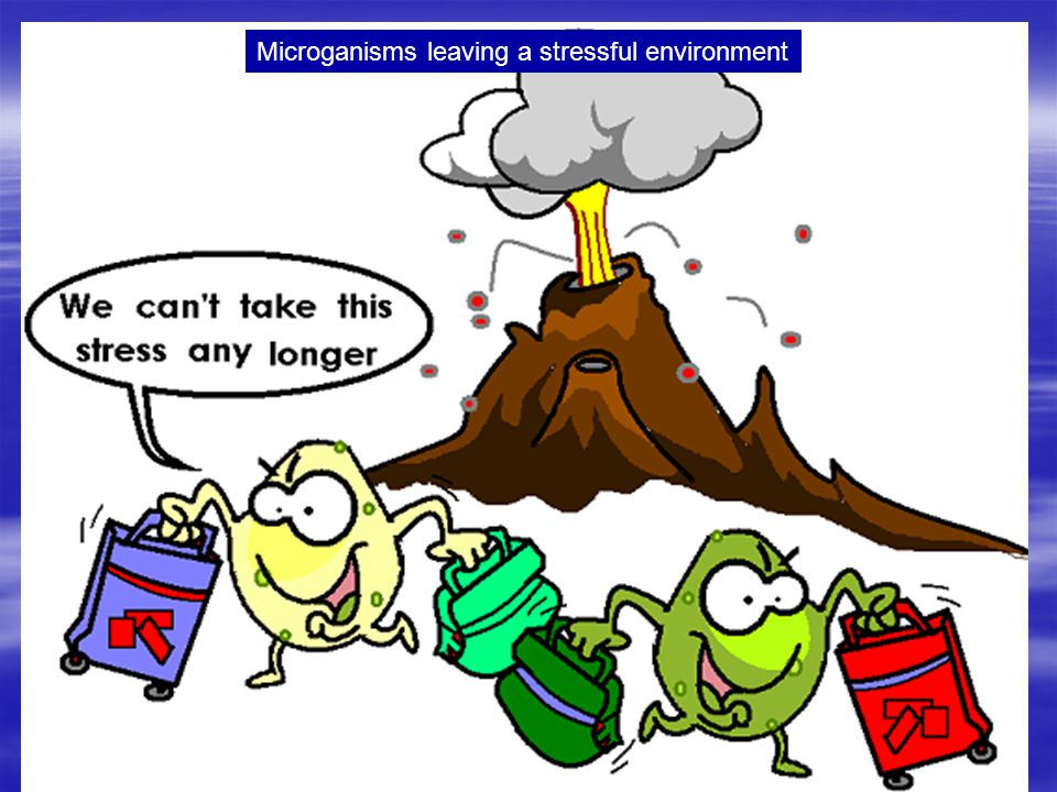 Microganisms leaving a stressful environment