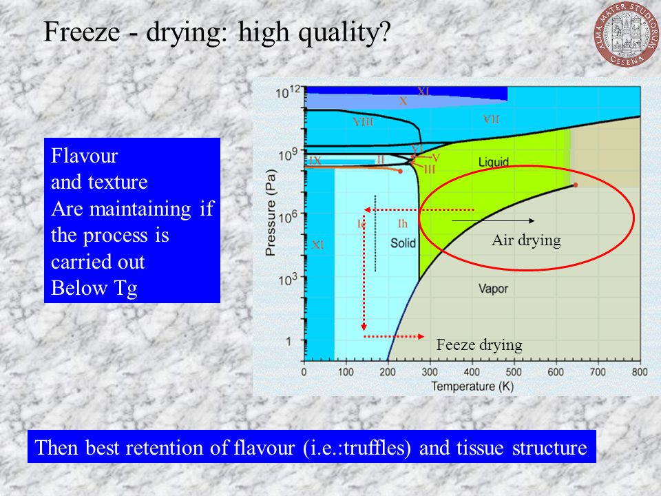 Freeze - drying: high quality