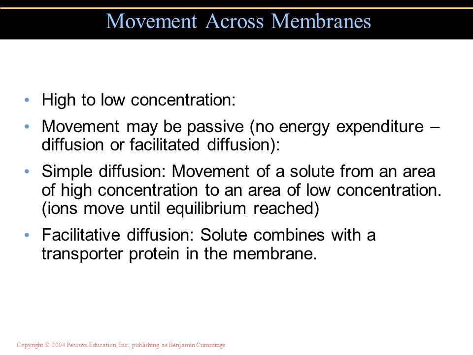 Movement Across Membranes