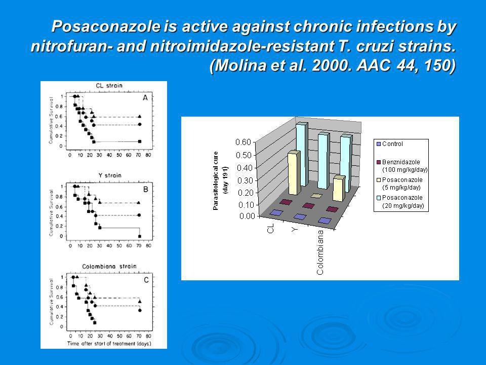Posaconazole is active against chronic infections by nitrofuran- and nitroimidazole-resistant T.