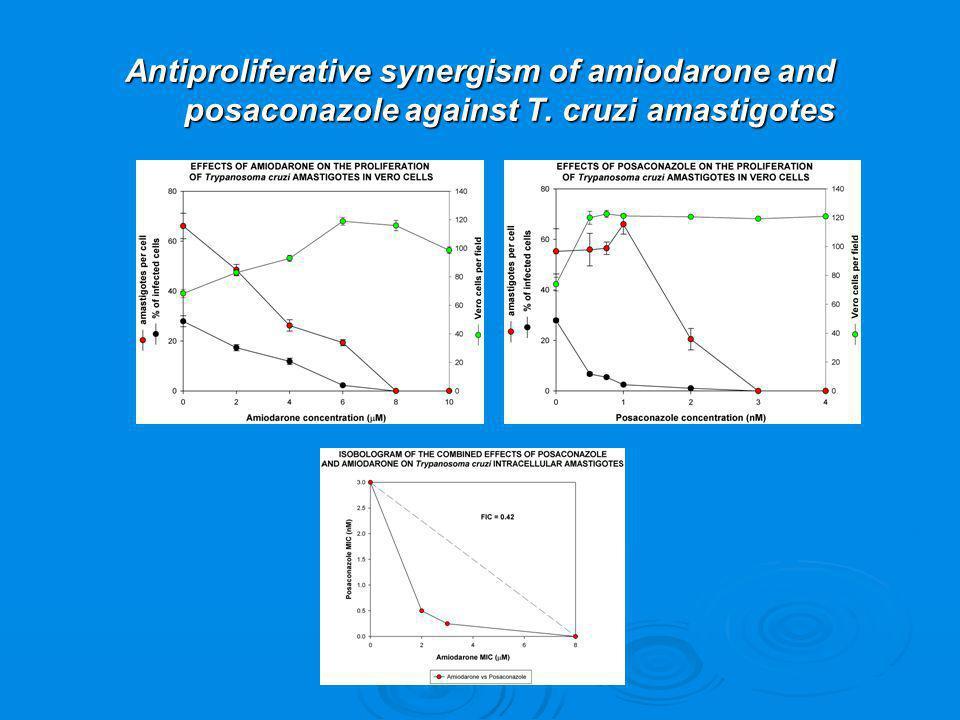 Antiproliferative synergism of amiodarone and posaconazole against T