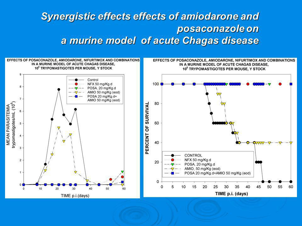Synergistic effects effects of amiodarone and posaconazole on a murine model of acute Chagas disease