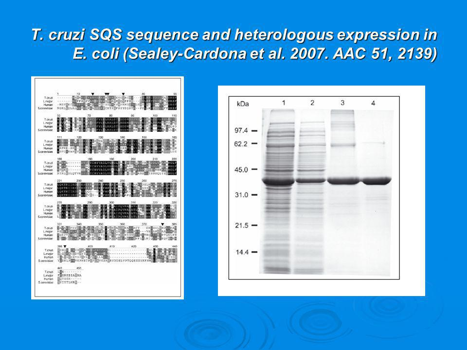T. cruzi SQS sequence and heterologous expression in E