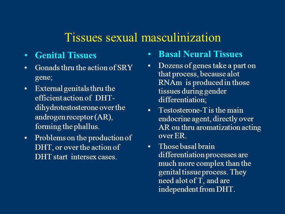 Tissues sexual masculinization