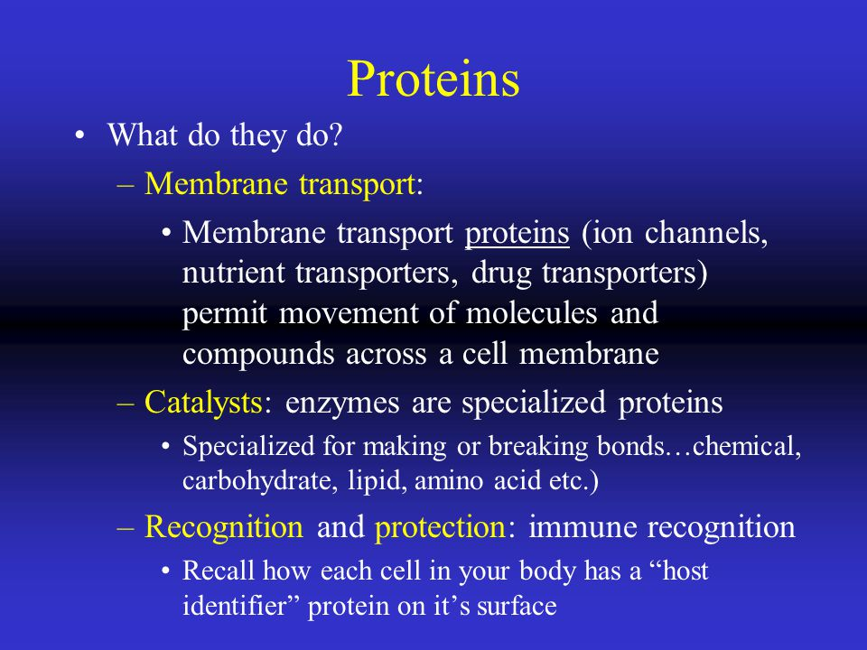Proteins What do they do Membrane transport: