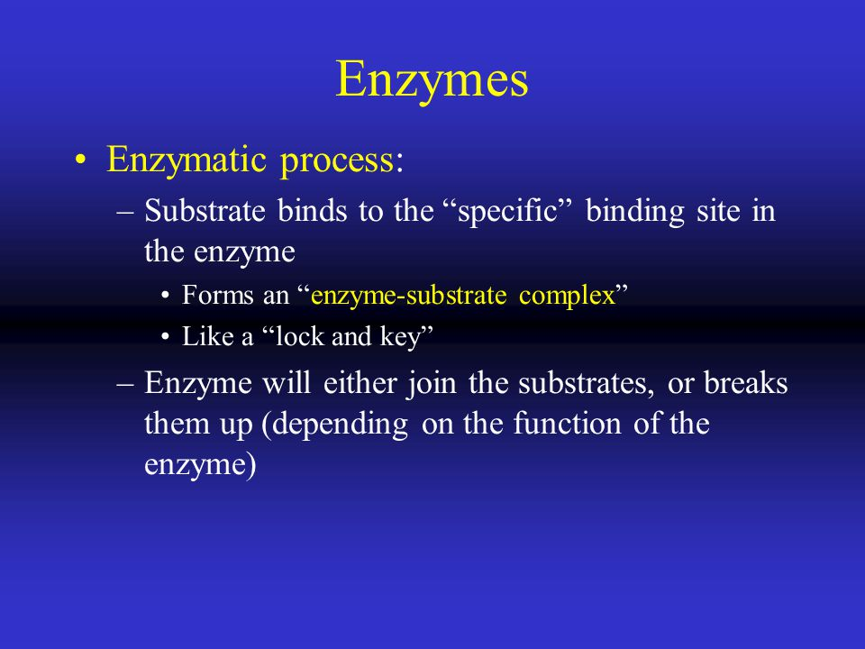 Enzymes Enzymatic process: