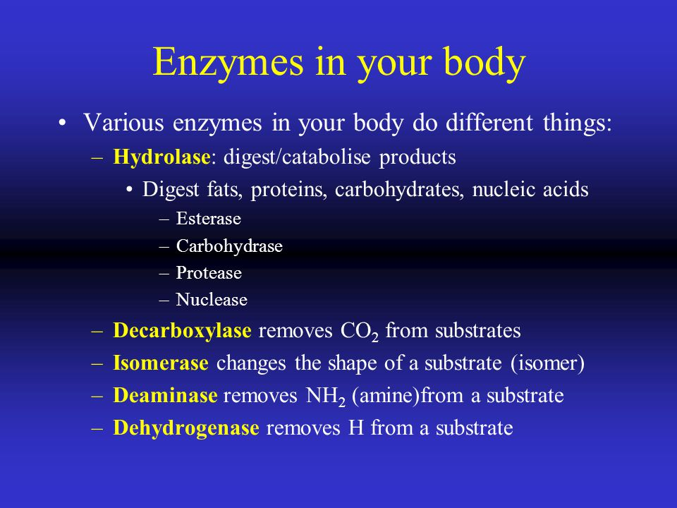 Enzymes in your body Various enzymes in your body do different things: