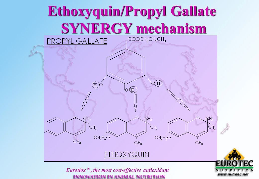 Ethoxyquin/Propyl Gallate SYNERGY mechanism