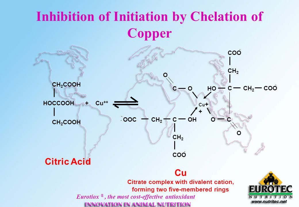 Inhibition of Initiation by Chelation of Copper