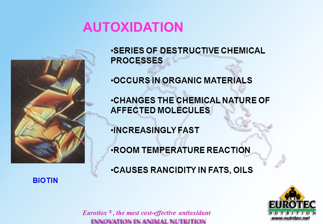 AUTOXIDATION SERIES OF DESTRUCTIVE CHEMICAL PROCESSES
