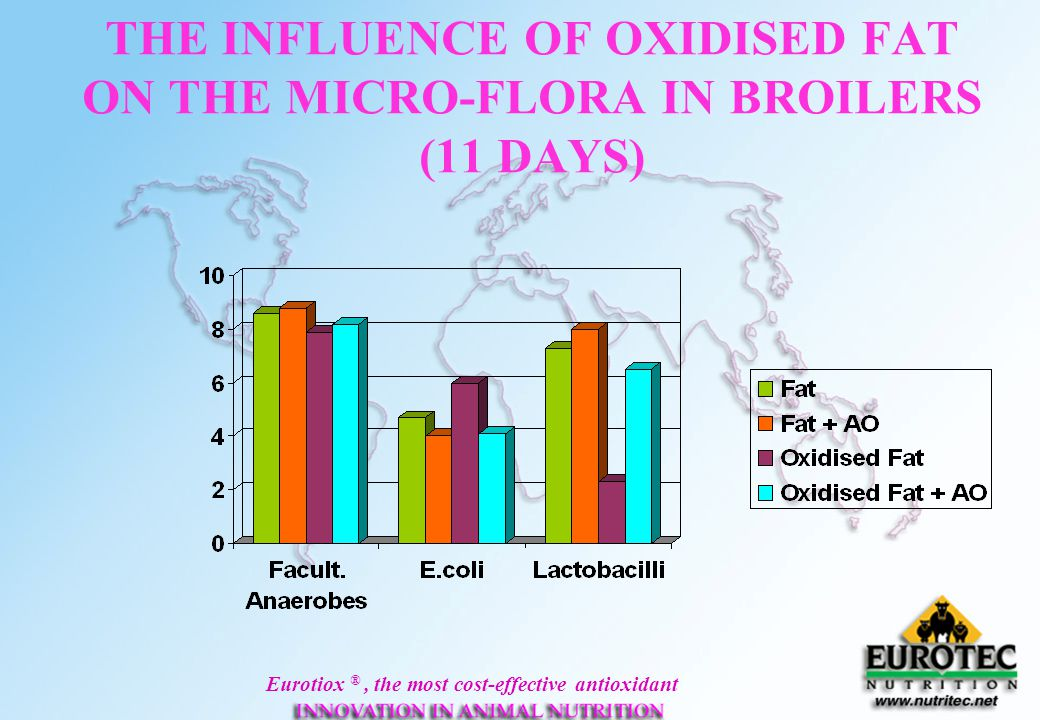 THE INFLUENCE OF OXIDISED FAT ON THE MICRO-FLORA IN BROILERS (11 DAYS)