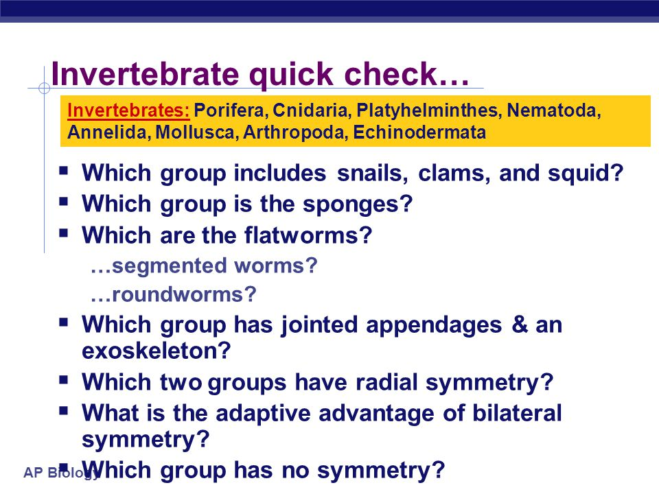 Invertebrate quick check…