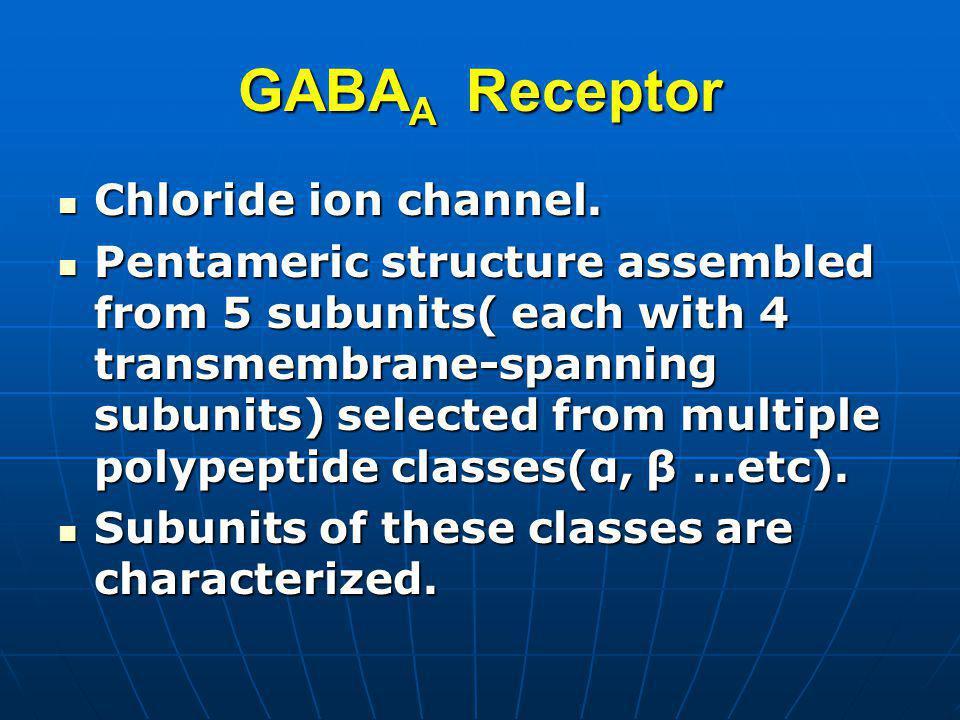 GABAA Receptor Chloride ion channel.