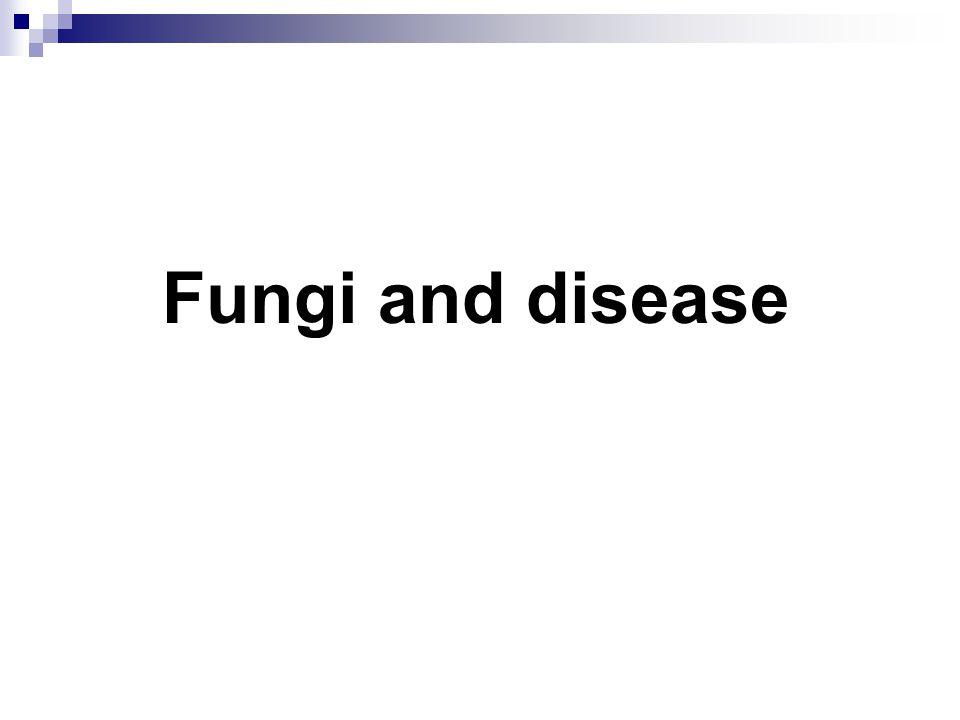 Fungi and disease
