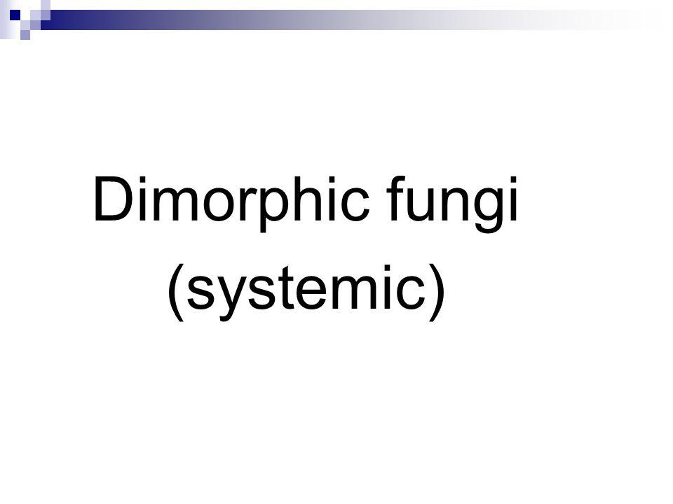 Dimorphic fungi (systemic)