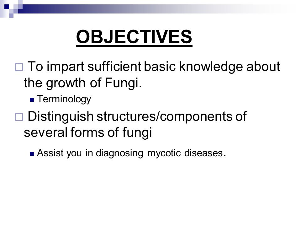 OBJECTIVES To impart sufficient basic knowledge about the growth of Fungi. Terminology. Distinguish structures/components of several forms of fungi.