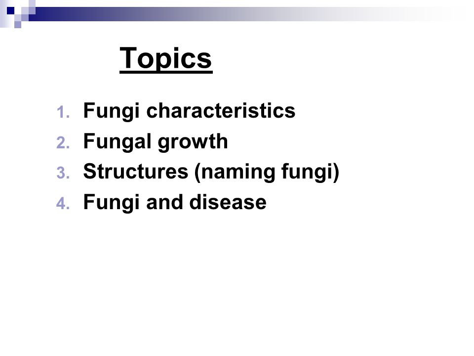 Topics Fungi characteristics Fungal growth Structures (naming fungi)