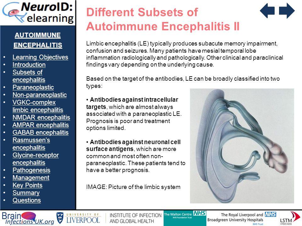 autoimmune encephalitis