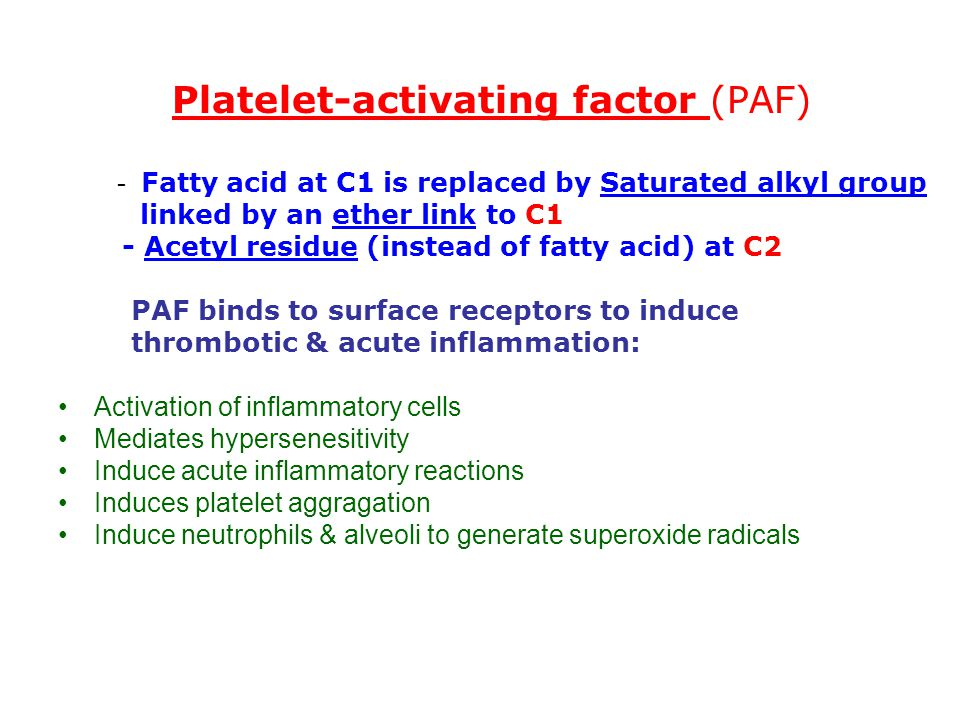 Platelet-activating factor (PAF)
