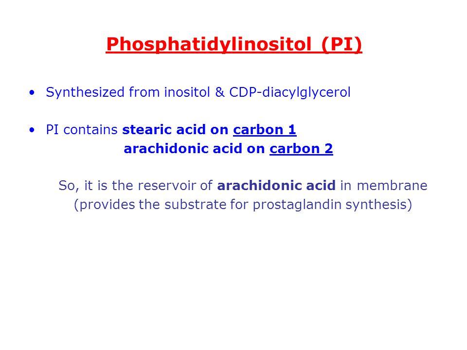 Phosphatidylinositol (PI)