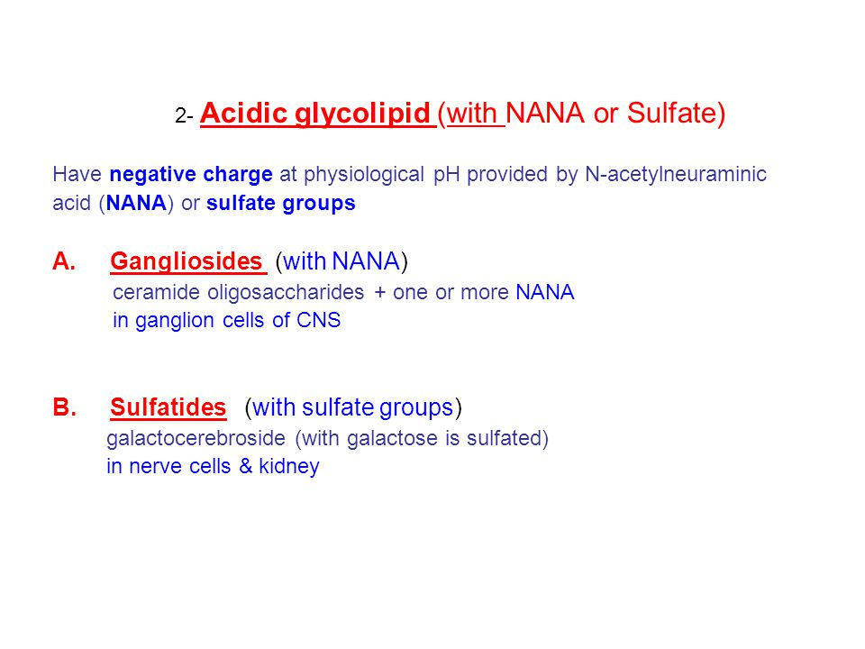 2- Acidic glycolipid (with NANA or Sulfate)