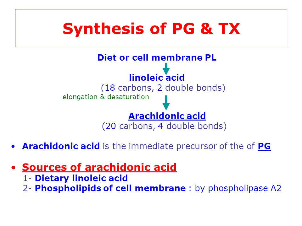 Synthesis of PG & TX Sources of arachidonic acid