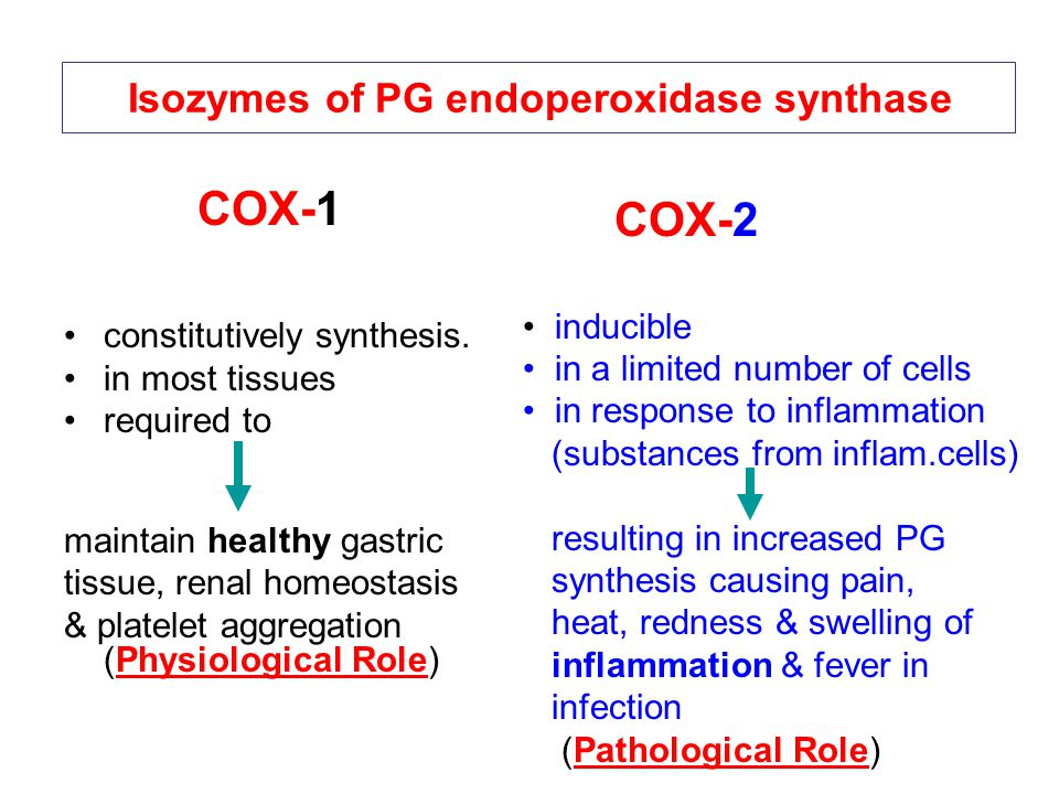 Isozymes of PG endoperoxidase synthase