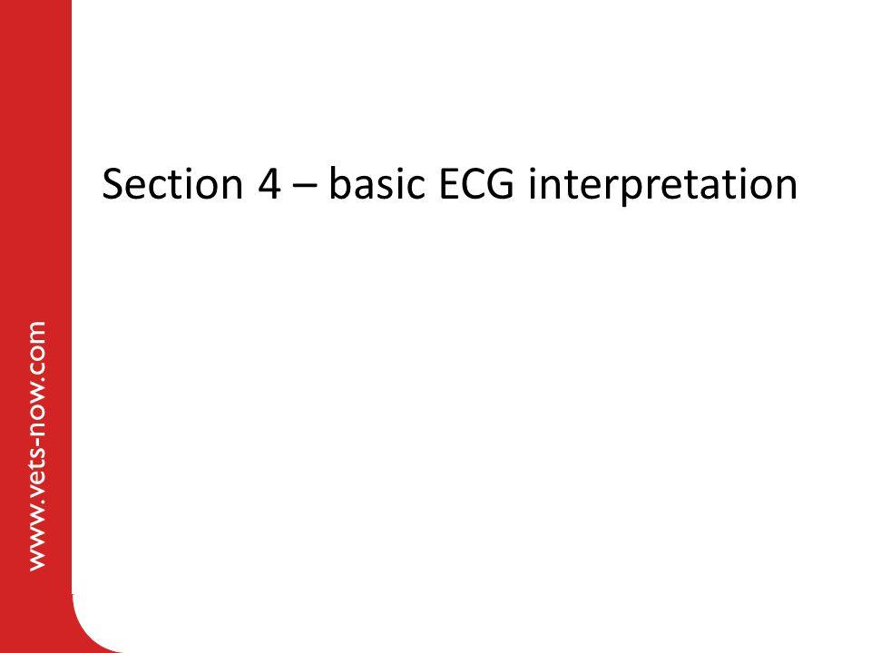 Section 4 – basic ECG interpretation
