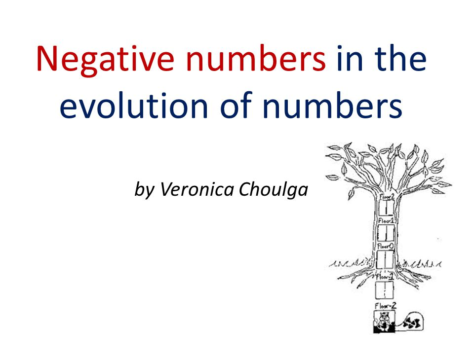 Negative numbers in the evolution of numbers