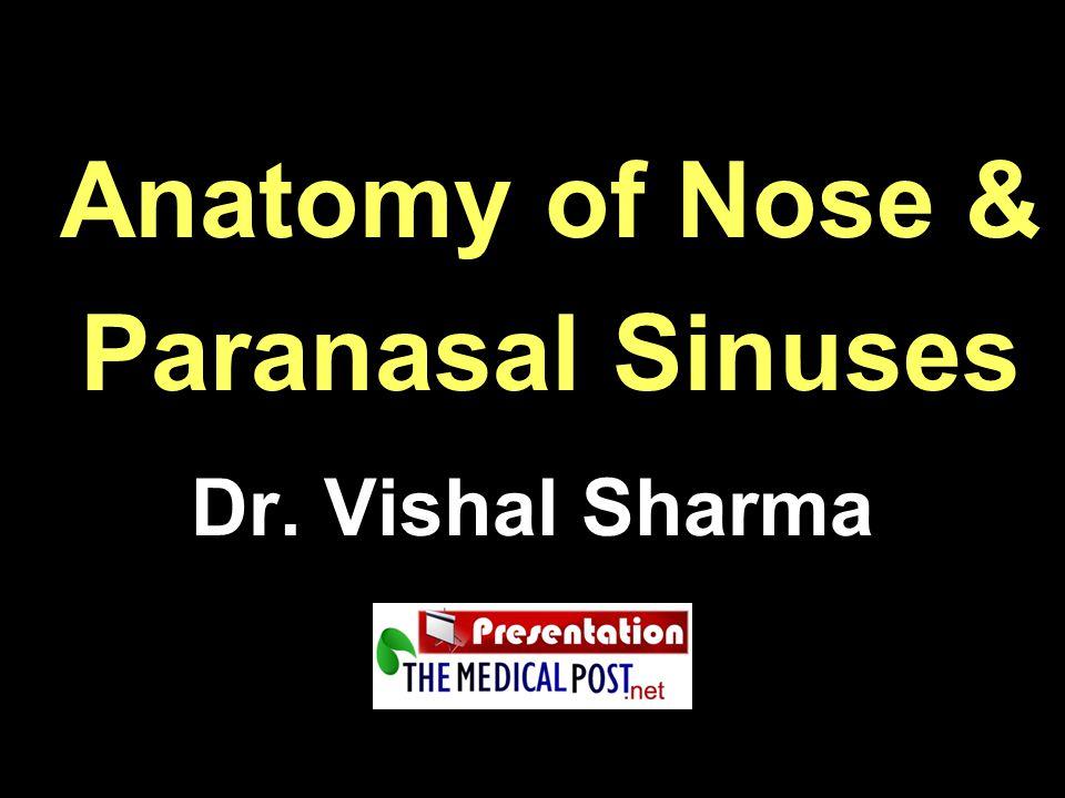 Anatomy of Nose & Paranasal Sinuses