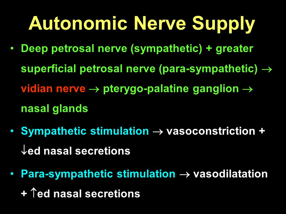 Autonomic Nerve Supply