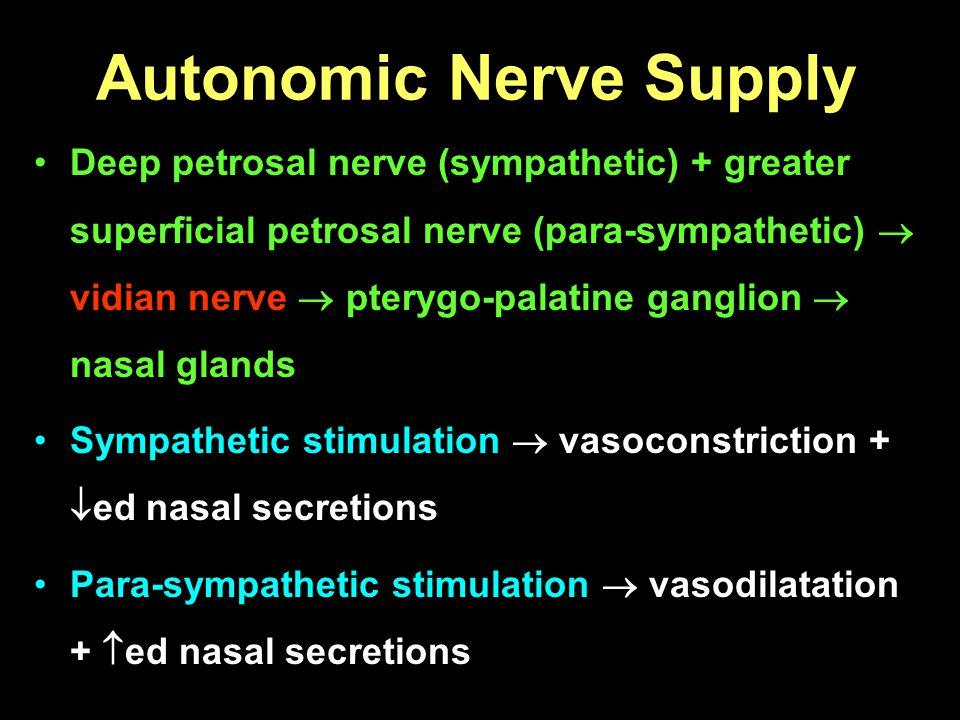Autonomic Nerve Supply