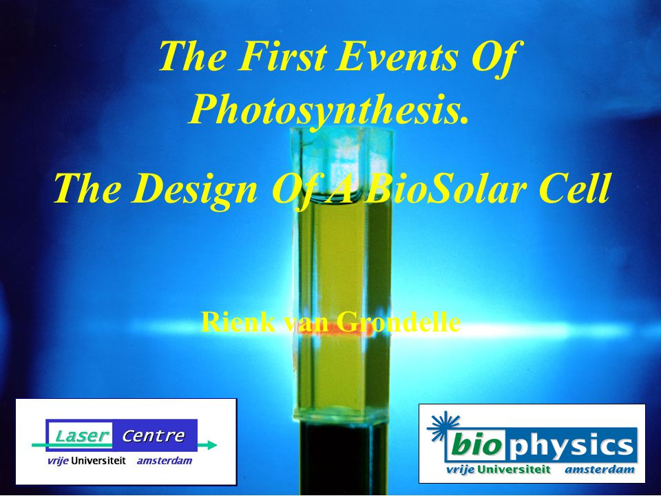The First Events Of Photosynthesis. The Design Of A BioSolar Cell