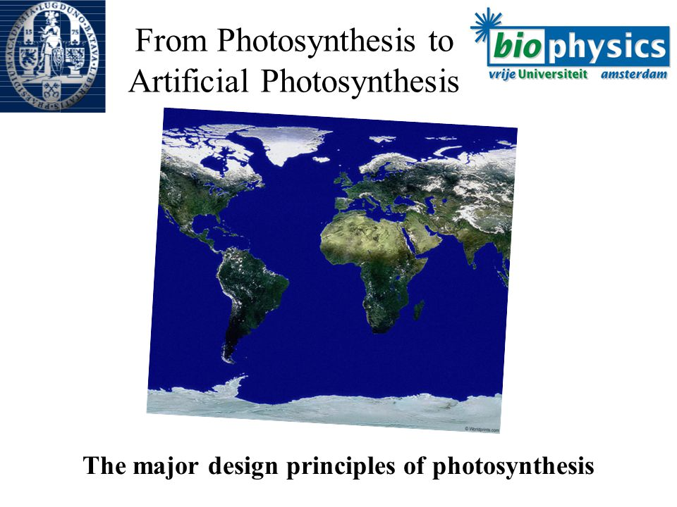 From Photosynthesis to Artificial Photosynthesis