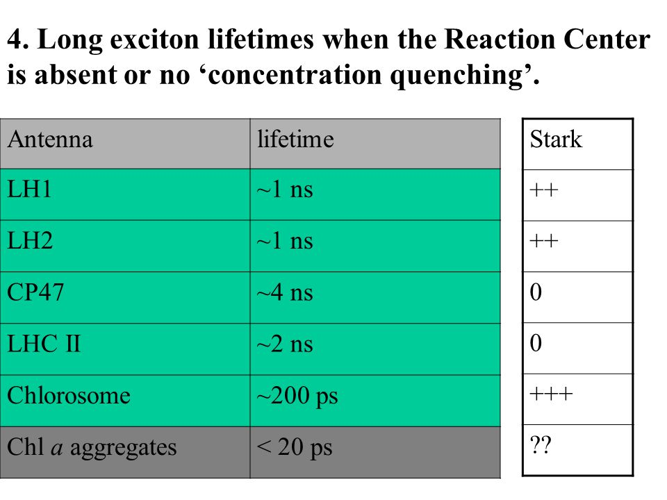 4. Long exciton lifetimes when the Reaction Center is absent or no 'concentration quenching'.